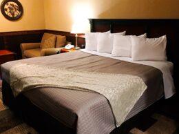 , Standard Lodge Room 17